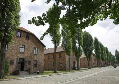 du-camp-d'Auschwitz-Birkenau